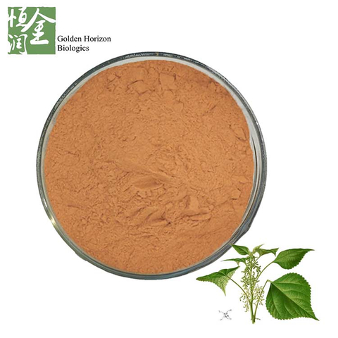 Manufacturer High Quality Product Ramie Leaf Extract