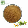 High Quality Spilanthes Acmella Flower Extract