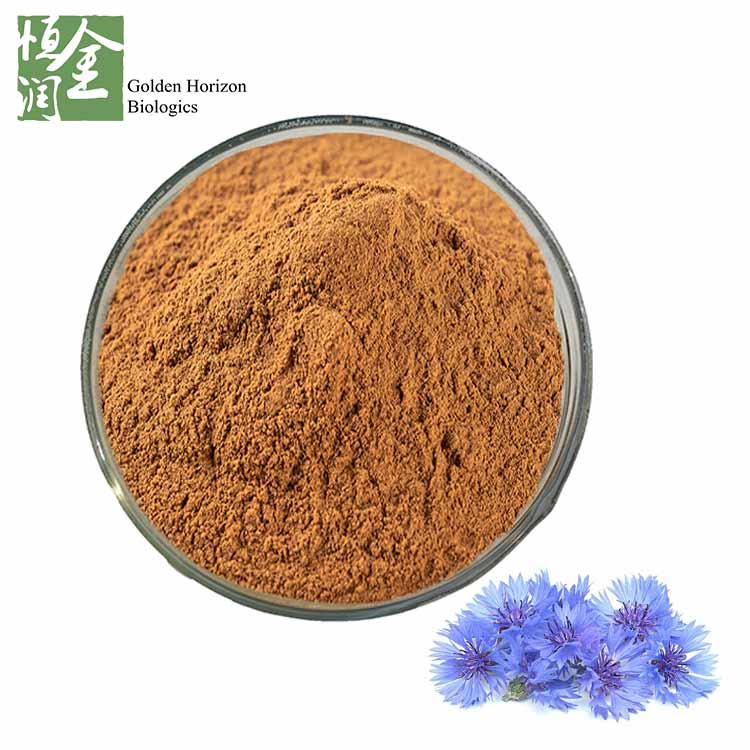 High Quality Cornflower Extract Centaurea Cyanus L. Powder