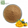 Organic Wild Chrysanthemum Extract Powder To Cure Hypertension