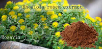 Rosavin Powder-Compound Only Be Found In Rhodiola Rosea Extract