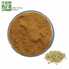 Factory Supply Natural Fennel Seed Extract 10:1 Shikimic Acid