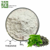 White Powder Antioxidant Polyphenol 20%-98% Green Tea Extract