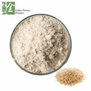 Factory Supply Best Brown Rice Extract Brown Rice Protein Powder in Bulk