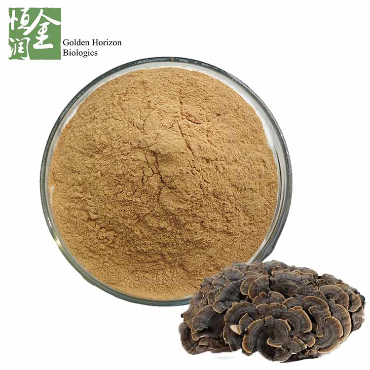 Natural Turkey Tail Mushroom Extract Powder Polysaccharides 30%