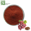 Bulk Atioxidant Grape Seed Extract Cas No 84929-27-1 for Dietary Supplements