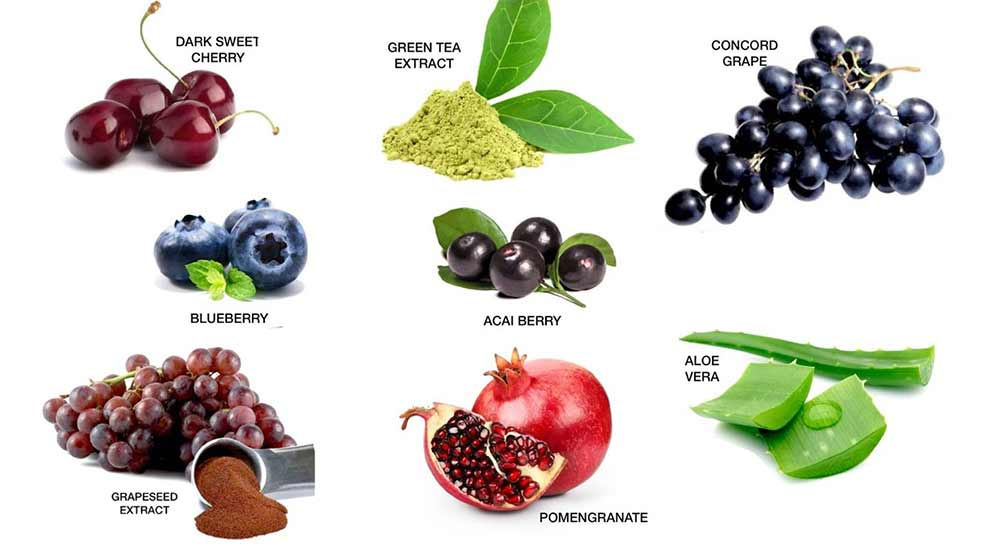 antioxidant ingredients
