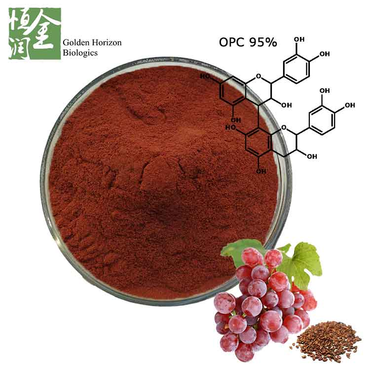 Pure Antioxidant Grape Seed Extract Powder for Kidney Disease