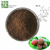 Wholesale Antibacterial Blushwood Berry Extract Power EBC 46