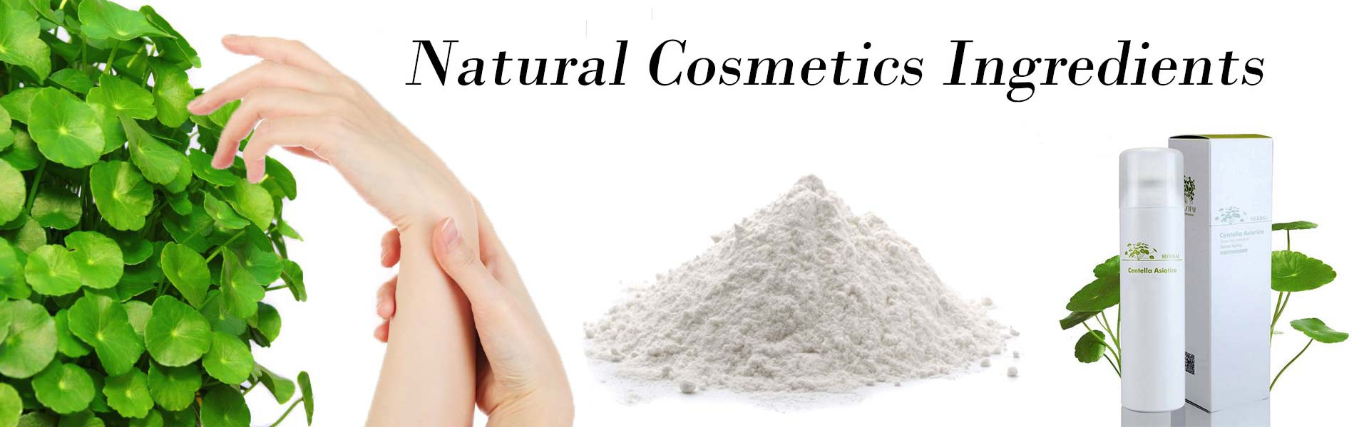 natural cosmetics ingredient