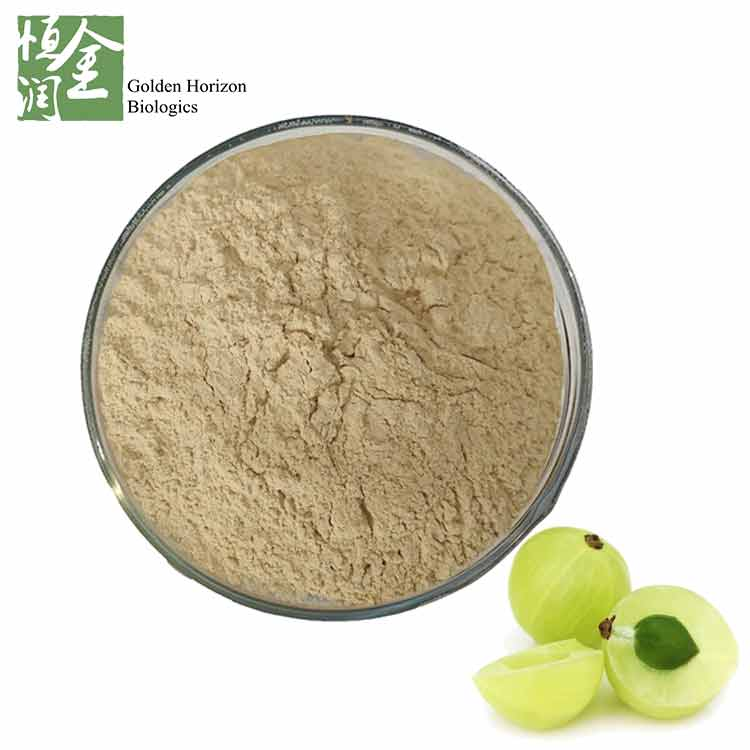 Whosale High Quality Amla Fruit Powder for Hair
