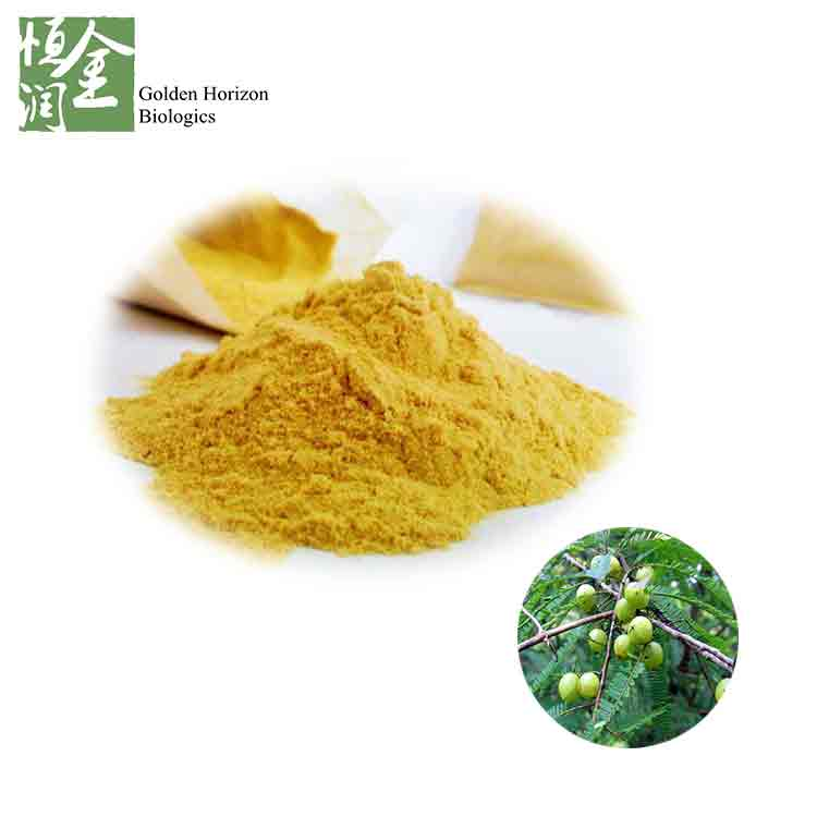 Factory Supplier Good Price 40% Polyphenols indian gooseberry powder / Amla Powder