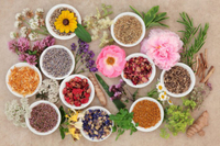U.S. Herbal Supplement Retail Sales Grow by 7.7% in 2016