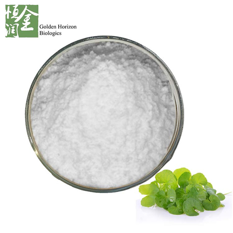 High Quality Gotu Kola Extract / Centella Asiatica Extract Asiaticoside 98%