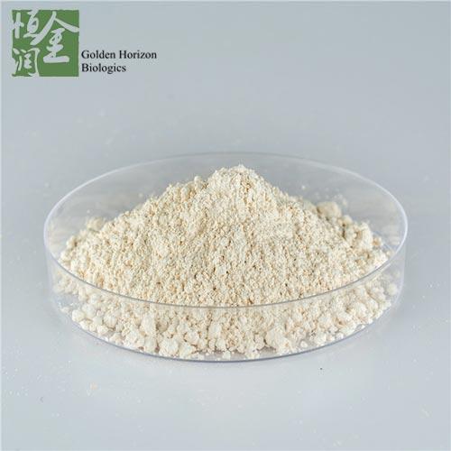 Healthy Loss Weight Hydroxycitric Acid Powder Hca 65 80 Garcinia Cambogia Extract Buy Garcinia Cambogia Extract Hydroxycitric Acid Powder Loss Weight Hydroxycitric Acid Product On Golden Horizon Biologics